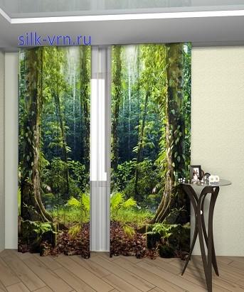 40 тропический ле