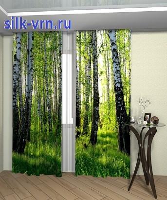 5 берёзовый лес