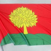 флаг Липецкой области на флагштоке
