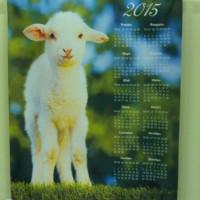 печать календарей 2015 год Овцы
